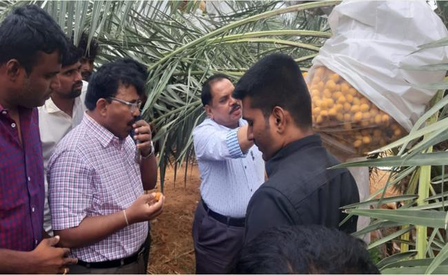 Software Engineer Quit His Job And Works In Farming - Sakshi