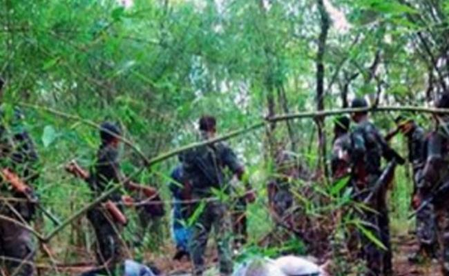 Encounter In Andhra Chhattisgarh Border Two Maoist Died - Sakshi