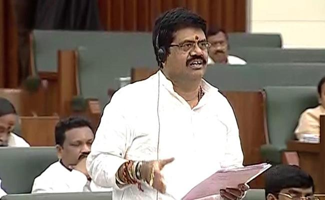 Minister Avanthi Srinivas Comments on TDP in Assembly - Sakshi