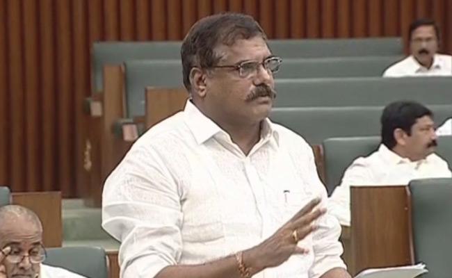AP Minister Botsa Satyanarayana Speech In AP Assembly - Sakshi
