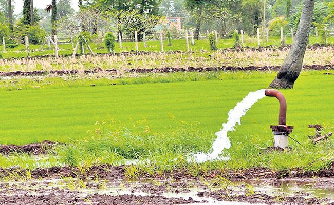 Kharif Crops Very Disappointed In Telangana - Sakshi