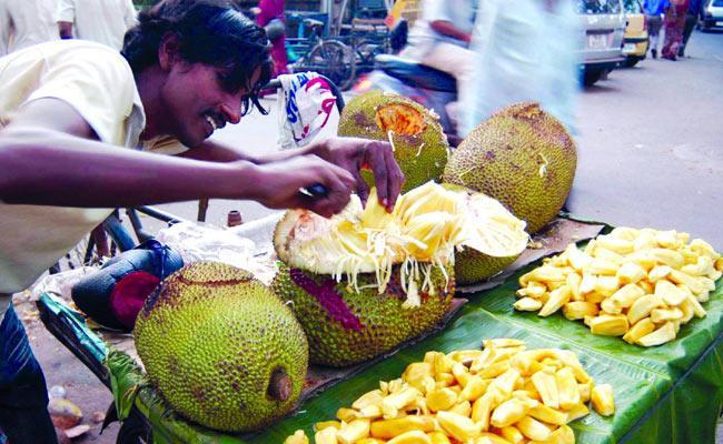 Special Article On Jack Fruit Day In Sakshi