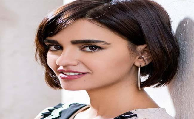 I Am Not Acting in That Serial: Actress Vibhoutee Sharma - Sakshi