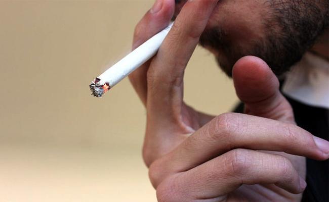 No Cancerous Elements In Smoking - Sakshi