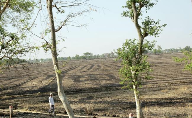 Andhra Pradesh Farmers Face Problem With Prohibition List Lands - Sakshi