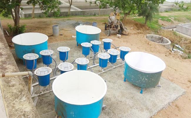 SRSP Fish Production Centre In Nizamabad - Sakshi
