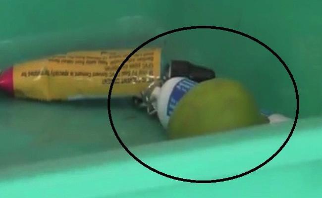 Lemon Ban In Karnataka Assembly - Sakshi