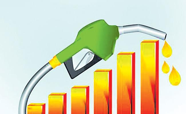 Petrol And Diesel Price Increase In India After Budget - Sakshi