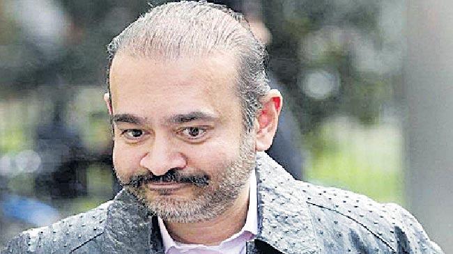 Debt Recovery Tribunal asks Nirav Modi to pay Rs 7,200 cr to PNB - Sakshi