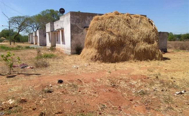Land Mafia Eye On Government Lands In Nalgonda - Sakshi