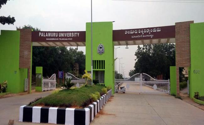 Only 38 percent Seats Filled In Palamuru University  - Sakshi
