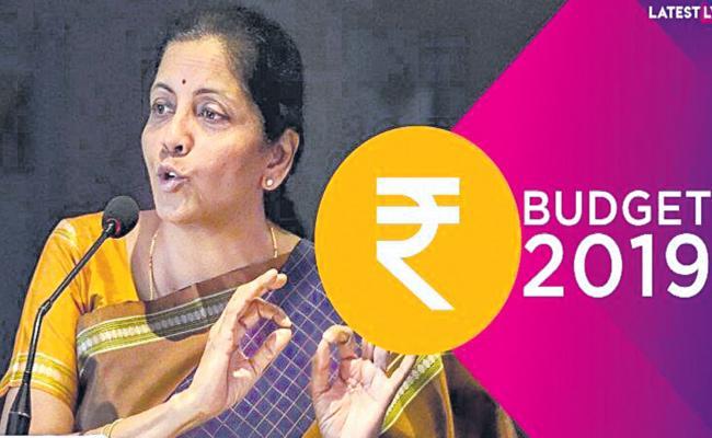 Prabhat Patnaik Article On 2019 Union Budget - Sakshi