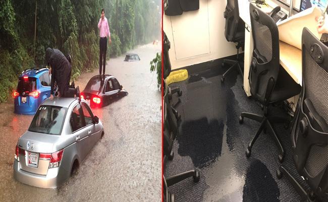 Heavy Rains Hits Washington - Sakshi
