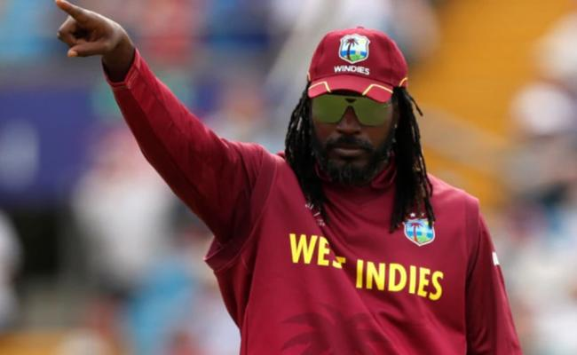No Chris Gayle for West Indies in Test series vs India - Sakshi