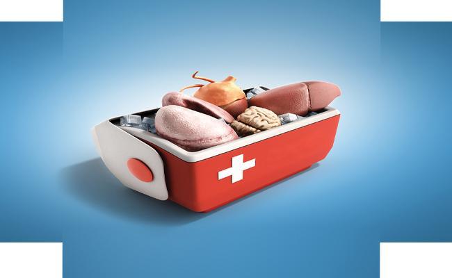 cover story on organ donation day in sakshi funday - Sakshi