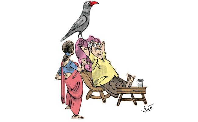 funday short story   - Sakshi