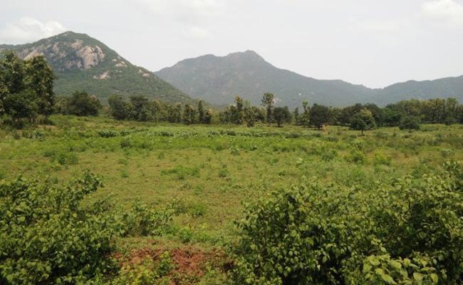 Local Leaders Eye On The Poor Lends Konda Lingalavalasa - Sakshi