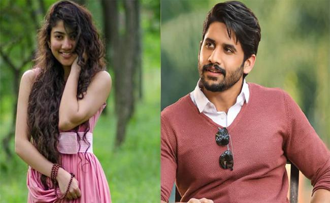 Shekar Kammula- Naga Chaitanya Movie Shooting Starts From August Last Week - Sakshi