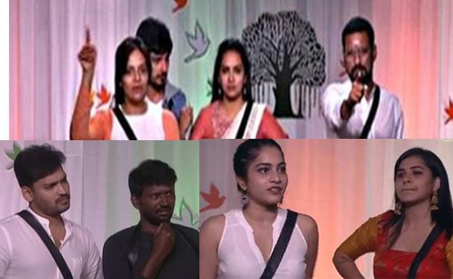 Independence Day Celebrations In Bigg Boss 3 Telugu - Sakshi