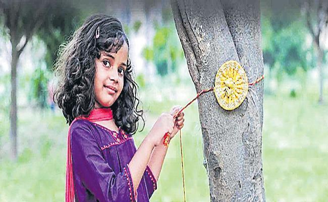 Brother And Sister Rakhi Festival Special Story - Sakshi