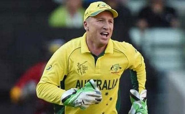 Sunrisers Hyderabad Appoints Brad Haddin As Assistant Coach - Sakshi
