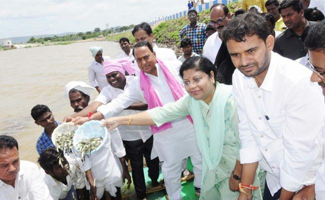 Fish Puppies Released In Swarna Project In Nirmal - Sakshi