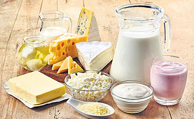 Milk Products Goo For Health - Sakshi