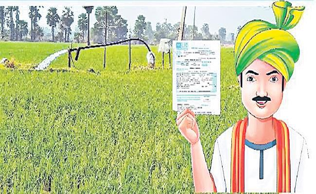 A.P Government Implementing Free Crop Insurance Programme  - Sakshi