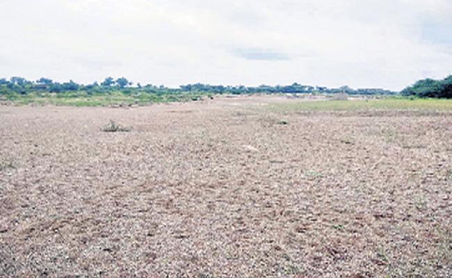 Manjeera Have No Water In Medak District - Sakshi
