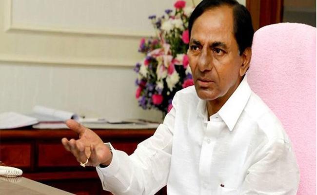 CM KCR Will Come Mahabubnagar - Sakshi
