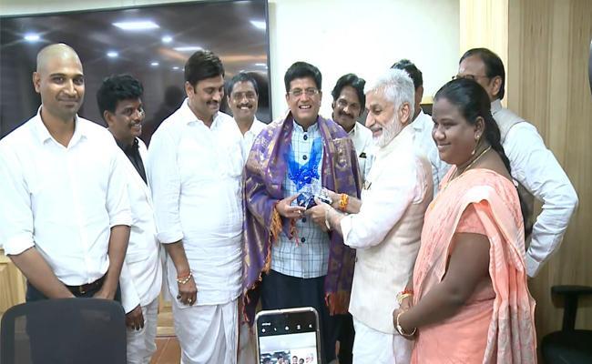 YSRCP MPs meets Railway Minister Piyush Goyal - Sakshi