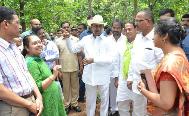 KCR Visits Komatibanda And Gave Directions To Collectors - Sakshi