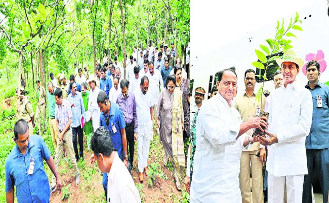 CM KCR Visits Gajwel Area In Medak - Sakshi