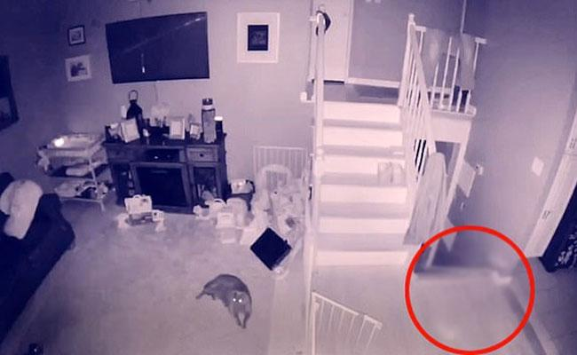 Ghost Captured In A Home CCTV Camera Of A Long Island Man - Sakshi