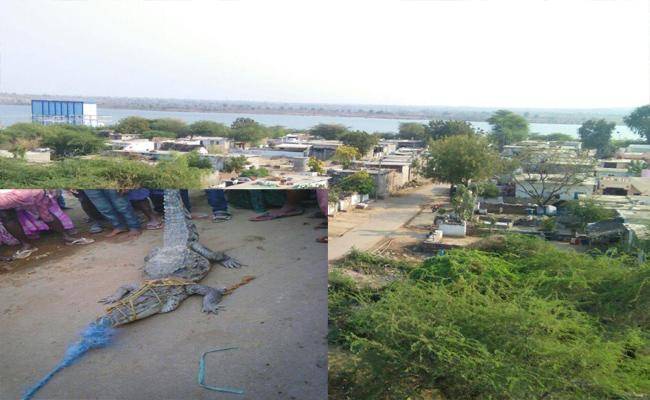 People's concern over tail pond backwater Adavidevulapalli - Sakshi