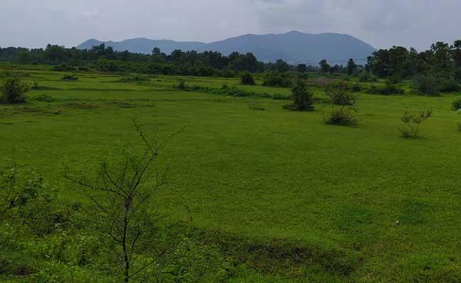 New Sand Policy In Vizianagaram District - Sakshi