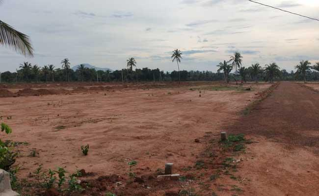 Identification Of Illegal Layouts In Srikakulam District - Sakshi