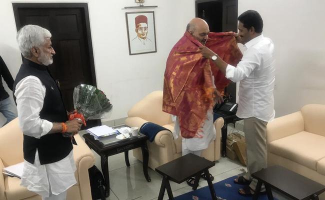 AP CM YS Jagan Meets Amit Shah - Sakshi