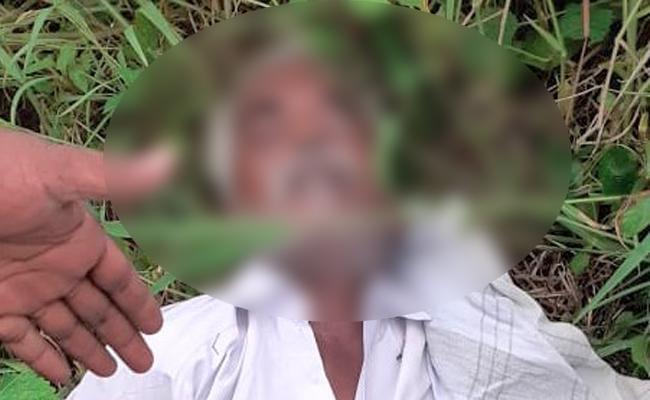 Farmer Dies Of Electrocution In Visakha District - Sakshi