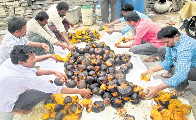 Organic Agriculture With Palm fruit - Sakshi