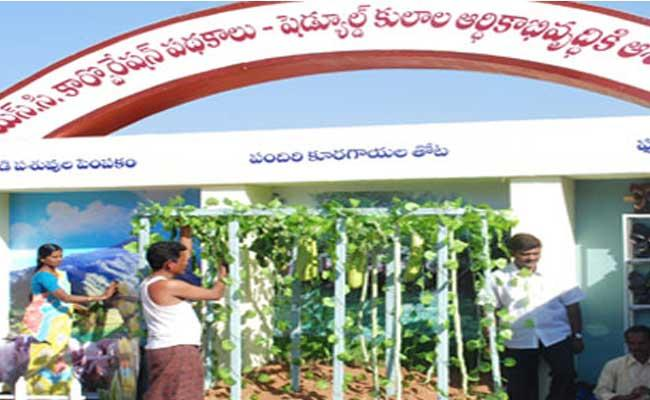 SC Corporation Division In Three Corporations - Sakshi