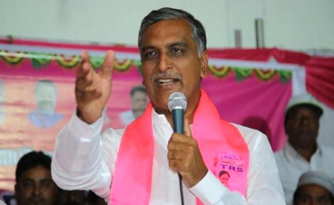 Harish Rao Has Planted Tree Near Siddipet Busstand - Sakshi