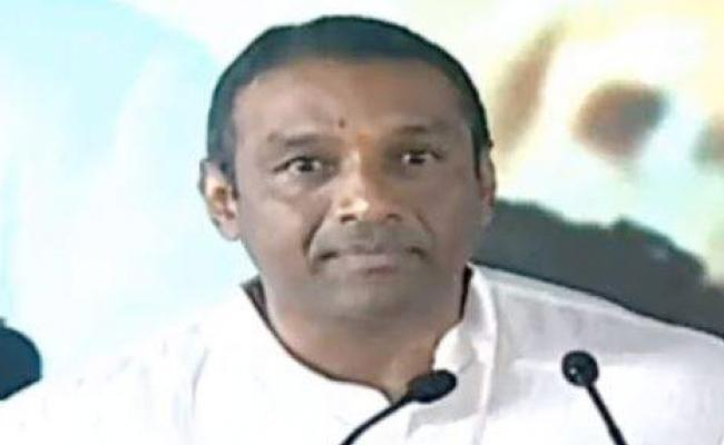 Mekapati Goutham Reddy Slams TDP Government At Nellore - Sakshi