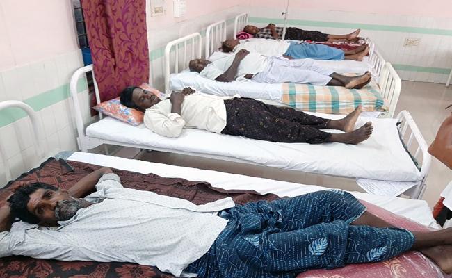 17 People Hospitalized For Snake Bites In Diviseema Krishna District - Sakshi