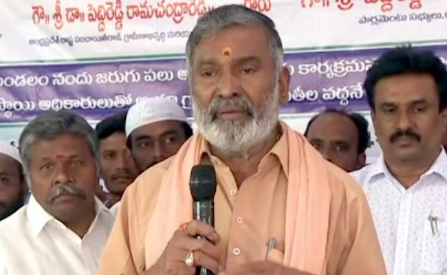 Minister Peddireddy ramachandra Reddy Review Of Rain floods Areas - Sakshi