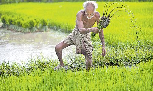 TO Get Investment, Farmers Should Get Special Act - Sakshi