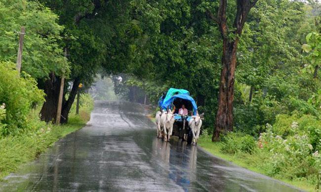 Today Weather Forecast For Andhra Pradesh - Sakshi