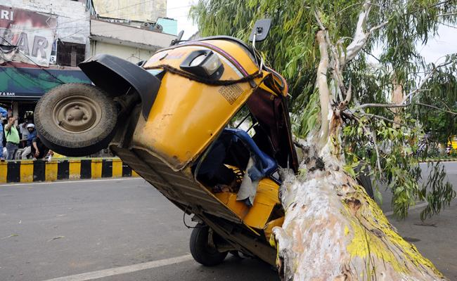 Tree Collapse Auto Damaged in Vijayawada - Sakshi