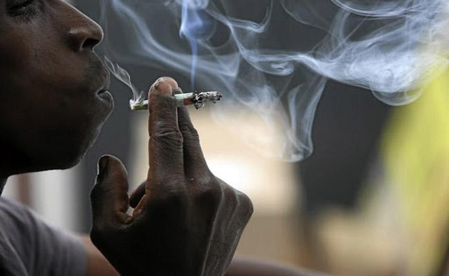 Each Marijuana Cigarette Costs 100 Rupees In Nizamabad District - Sakshi