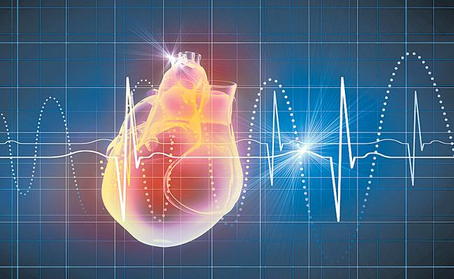 A small size heart was developed with cells extracted from a person - Sakshi